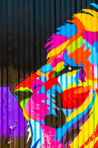 320x480 Lion Graffiti 5k