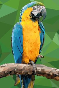 1125x2436 Macaw Low Poly Digital Art