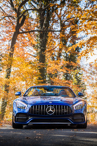 640x1136 Mercedes AMG GT C Roadster 2018