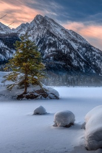 640x1136 Nature Landscape Winter Snow