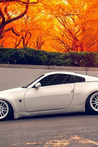 480x854 Nissan 350Z Autumn