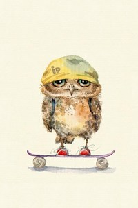 800x1280 Owl On Skateboard