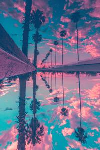 480x854 Palm Trees Reflection Sky
