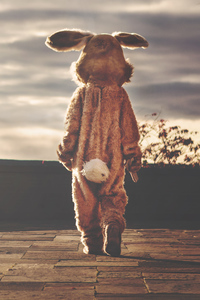 Person In Bunny Costume Walking Forward