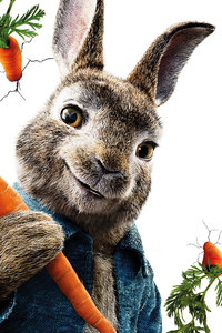2160x3840 Peter Rabbit 5k
