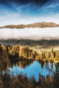 480x800 Pine Trees Beside Water Body Mountains Clouds 4k