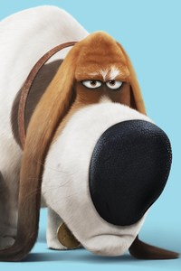 Pops The Secret Life Of Pets