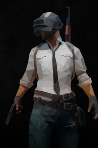 720x1280 Pubg Polygon Arts