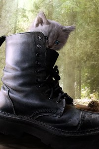 360x640 Puss In Boots 2 Movie