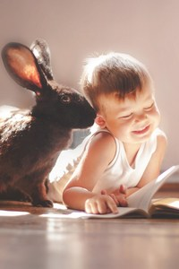 320x480 Rabbit And Children Cute