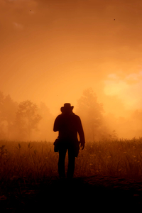 240x400 Red Dead Redemption 2 Game