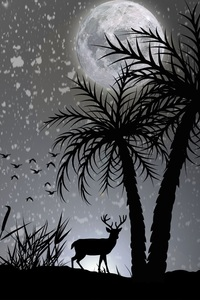 640x1136 Reindeer Dark Night Moon Minimalist