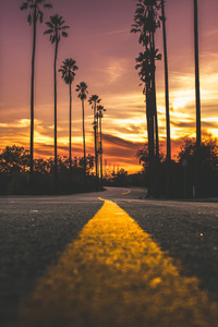 1440x2560 Road In City During Sunset