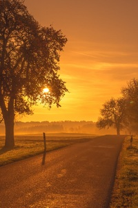 2160x3840 Scenic Road Sunrise Sunset Trees Meadow
