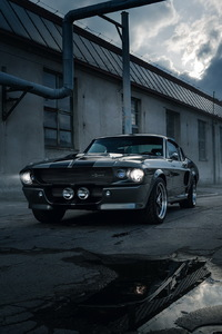 240x400 Shelby