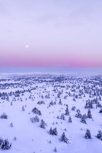 750x1334 Snow Covered Field 4k