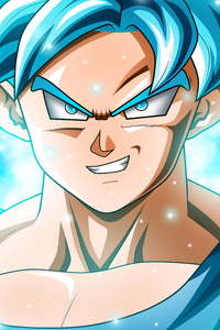 750x1334 Son Goku Dragon Ball Super 12k