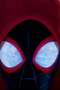 320x568 SpiderMan Into The Spider Verse 2018