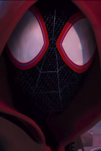 320x568 SpiderMan Into The Spider Verse Movie 2018