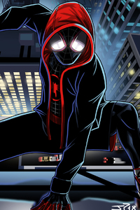 SpiderMan Into The Spider Verse Movie Art