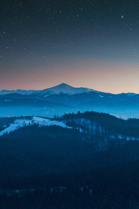 320x568 Stars In The Sky Foggy Season Forest Mountains 4k