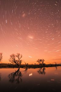 480x800 Startrail Longexposure Trees Cool