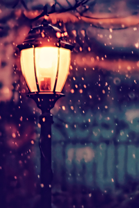 1440x2960 Street Light Winter 4k