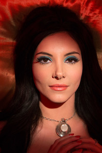 800x1280 The Love Witch