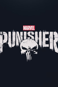 The Punisher 2017 HD Logo