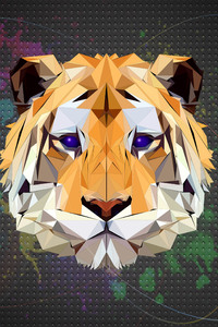 240x400 Tiger Facets