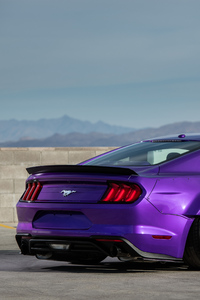 320x568 TJIN Edition Ford Mustang EcoBoost 2018 Rear