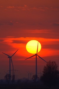 320x480 Wind Turbines Evening Sunlight Energy Sunset