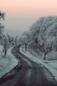 480x800 Winter Road Snow Frozen Trees On Sides 5k