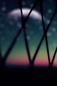 Wire Fence Macro