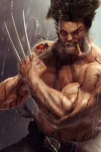 Wolverine Artwork 4k