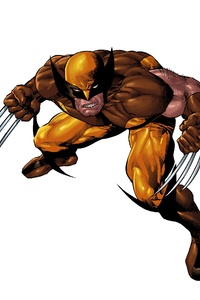 240x320 X Men Marvel Comics Wolverine