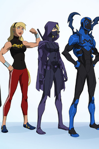 640x1136 Young Justice Outsiders 2017
